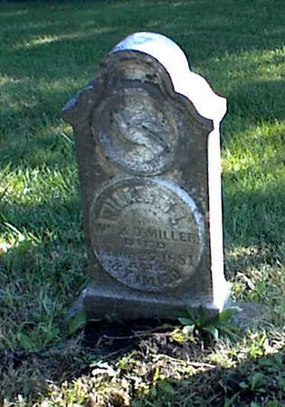 MILLER, WILLIAM L. - Lucas County, Iowa | WILLIAM L. MILLER