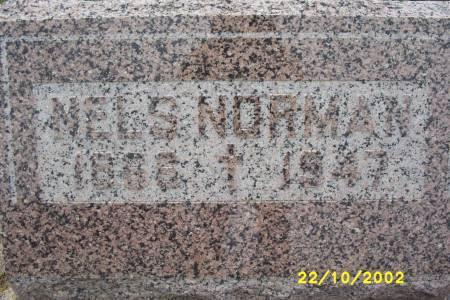NORMAN, NELS - Lucas County, Iowa | NELS NORMAN