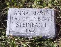 STEINBACH, ANNA MARIE - Lucas County, Iowa | ANNA MARIE STEINBACH