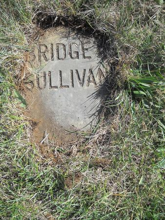 SULLIVAN, BRIDGET - Lucas County, Iowa   BRIDGET SULLIVAN