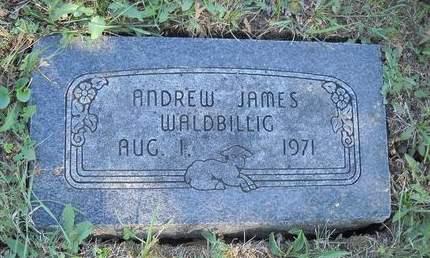 WALDBILLIG, ANDREW JAMES - Lucas County, Iowa | ANDREW JAMES WALDBILLIG