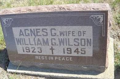 WILSON, AGNES G - Lucas County, Iowa | AGNES G WILSON