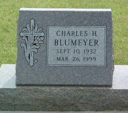 BLUMEYER, CHARLES H. - Lyon County, Iowa | CHARLES H. BLUMEYER