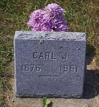 JOHNSON, CARL JOHAN - Lyon County, Iowa   CARL JOHAN JOHNSON