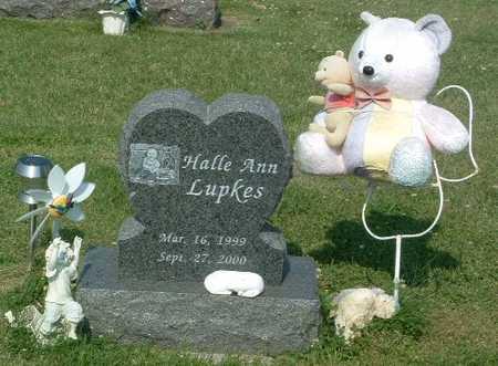 LUPKES, HALLE ANN - Lyon County, Iowa | HALLE ANN LUPKES