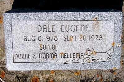 MELLEMA, DALE EUGENE - Lyon County, Iowa | DALE EUGENE MELLEMA