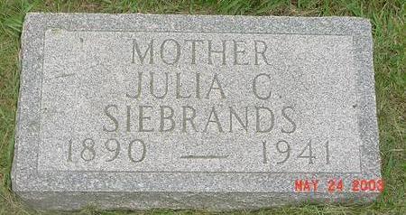 BLUM SIEBRANDS, JULIA - Lyon County, Iowa   JULIA BLUM SIEBRANDS