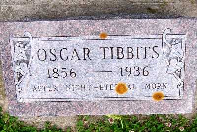 TIBBITS, OSCAR - Lyon County, Iowa | OSCAR TIBBITS