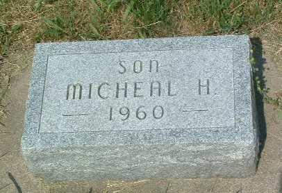 VAN BRIESEN, MICHEAL H. - Lyon County, Iowa | MICHEAL H. VAN BRIESEN