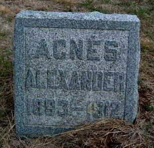 ALEXANDER, AGNES - Madison County, Iowa | AGNES ALEXANDER