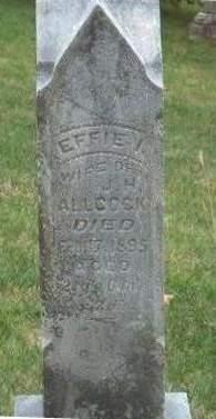 ALLCOCK, EFFIE IRENE - Madison County, Iowa   EFFIE IRENE ALLCOCK