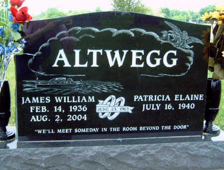 ALTWEGG, PATRICIA ELAINE - Madison County, Iowa | PATRICIA ELAINE ALTWEGG