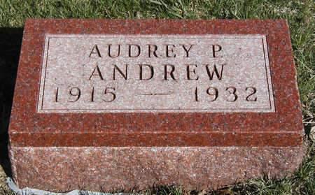ANDREW, AUDREY PRINCELLE - Madison County, Iowa | AUDREY PRINCELLE ANDREW