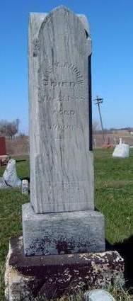 ANDREW, ELIAS M. - Madison County, Iowa   ELIAS M. ANDREW