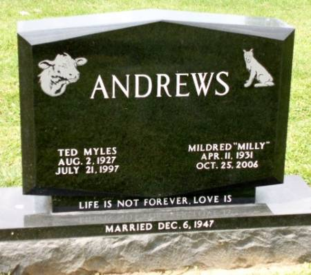 ANDREWS, TED MYLES - Madison County, Iowa | TED MYLES ANDREWS