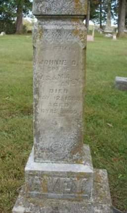 AVEY, JOHNNIE DAVIS - Madison County, Iowa | JOHNNIE DAVIS AVEY