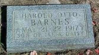 BARNES, HAROLD OTTO - Madison County, Iowa | HAROLD OTTO BARNES
