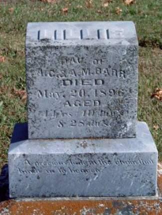 BARR, LILLIE ELLEN - Madison County, Iowa | LILLIE ELLEN BARR