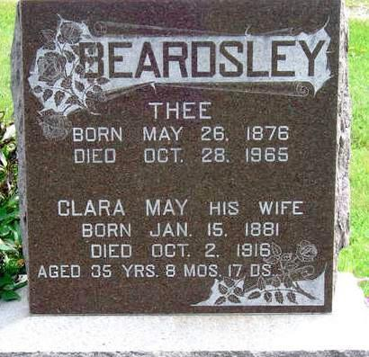 BEARDSLEY, THEODORE (THEE) - Madison County, Iowa | THEODORE (THEE) BEARDSLEY