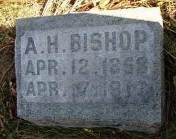 BISHOP, AUSTIN H. - Madison County, Iowa   AUSTIN H. BISHOP