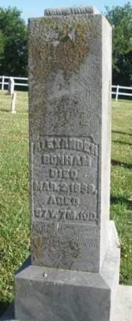 BONHAM, ALEXANDER - Madison County, Iowa | ALEXANDER BONHAM