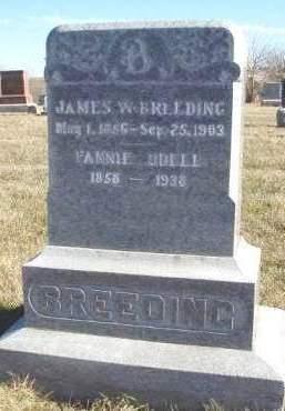 BREEDING, FANNIE ANN - Madison County, Iowa | FANNIE ANN BREEDING