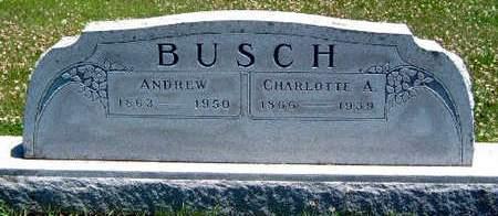 BUSCH, CHARLOTTE AMY - Madison County, Iowa | CHARLOTTE AMY BUSCH