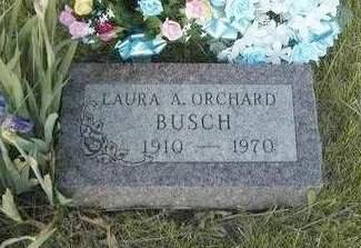 ORCHARD BUSCH, LAURA  A. - Madison County, Iowa | LAURA  A. ORCHARD BUSCH