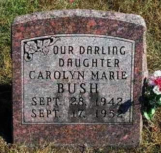 BUSH, CAROLYN MARIE - Madison County, Iowa   CAROLYN MARIE BUSH