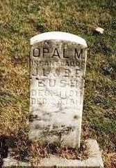 BUSH, OPAL MARIE - Madison County, Iowa | OPAL MARIE BUSH