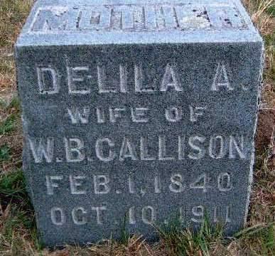 CALLISON, DELILA A. - Madison County, Iowa | DELILA A. CALLISON