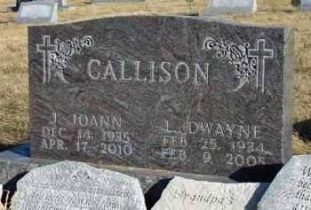 CALLISON, LOWELL DWAYNE - Madison County, Iowa | LOWELL DWAYNE CALLISON