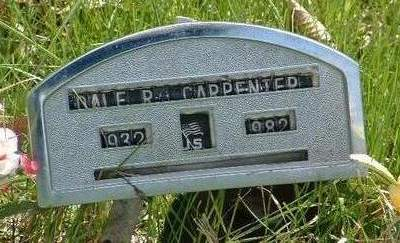 CARPENTER, DALE RAYMOND - Madison County, Iowa | DALE RAYMOND CARPENTER