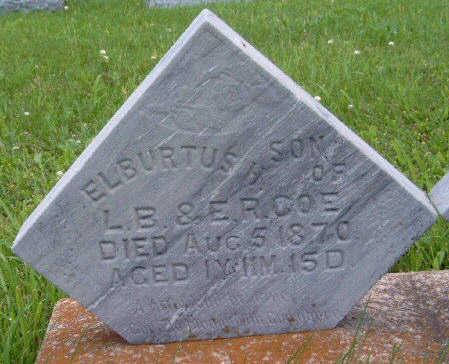 COE, ELBURTUS HYDE - Madison County, Iowa   ELBURTUS HYDE COE