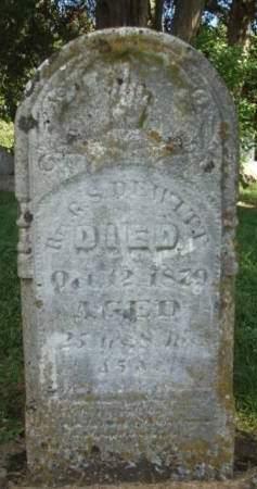 DEWITT, GEORGE STEPHANIS - Madison County, Iowa   GEORGE STEPHANIS DEWITT