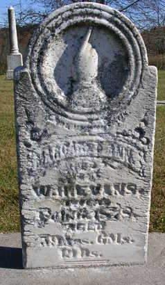 EVANS, MARGARET ANN - Madison County, Iowa   MARGARET ANN EVANS