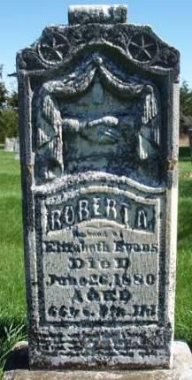 EVANS, ROBERT ALEXANDER - Madison County, Iowa | ROBERT ALEXANDER EVANS