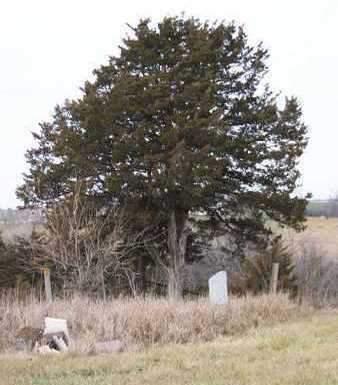 FARRIS, CEMETERY - Madison County, Iowa | CEMETERY FARRIS