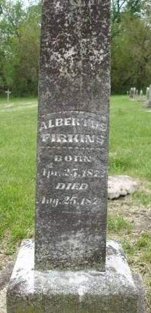 FIRKINS, ALBERTUS - Madison County, Iowa   ALBERTUS FIRKINS