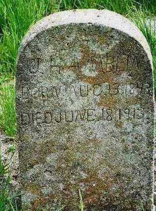 HAMBLIN, FLAVIUS JOSEPHUS (JOSEPH) - Madison County, Iowa   FLAVIUS JOSEPHUS (JOSEPH) HAMBLIN