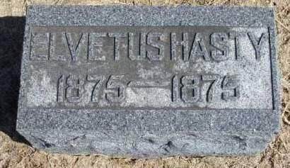 HASTY, ELVETUS - Madison County, Iowa   ELVETUS HASTY
