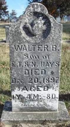 HAYS, WALTER B. - Madison County, Iowa | WALTER B. HAYS