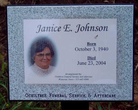 JOHNSON, JANICE ELAINE - Madison County, Iowa   JANICE ELAINE JOHNSON
