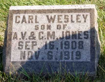 JONES, CARL WESLEY - Madison County, Iowa | CARL WESLEY JONES
