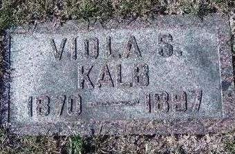KALB, VIOLA SARAH - Madison County, Iowa | VIOLA SARAH KALB