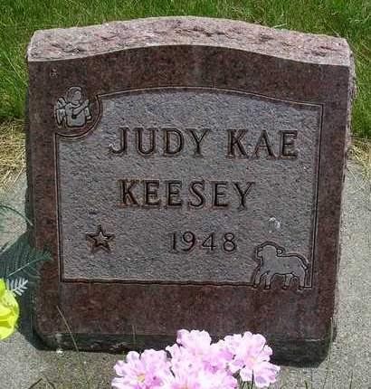 KEESEY, JUDY KAE - Madison County, Iowa | JUDY KAE KEESEY