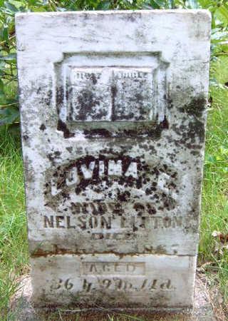 LITTON, LOVINA ELLEN - Madison County, Iowa | LOVINA ELLEN LITTON