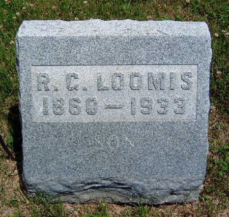 LOOMIS, RINALDO GARIBALDI - Madison County, Iowa | RINALDO GARIBALDI LOOMIS