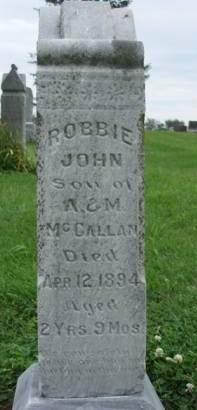 MCCALLAN, ROBBIE JOHN - Madison County, Iowa   ROBBIE JOHN MCCALLAN
