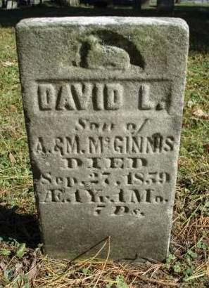 MCGINNIS, DAVID L. - Madison County, Iowa | DAVID L. MCGINNIS